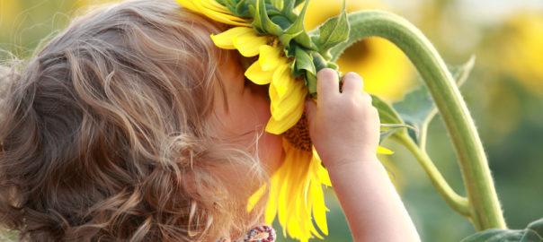 Dicas como envolver seus pimpolhos em atividades ao ar livre e em contato com a natureza