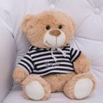 presente infantil pelucia ursinho menina menino especial