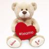 urso de pelucia com coração e hashtag eu te amo