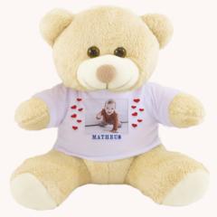 urso de pelucia personalizado com foto e nome do bebe ou crianca