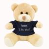 Urso de pelucia personalizado. Ideia de presente para namorado