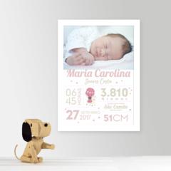 Quadro com os dados do nascimento lhama recém-nascido